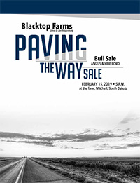 Paving the Way Bull Sale - FEBRUARY 15, 2019 @ 5PM